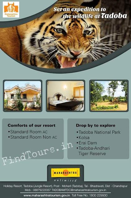 MTDC Moharli Tadoba India - Resort offers